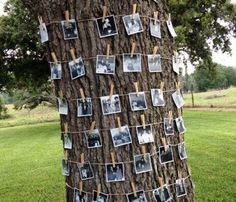 family photo tree. great idea for family reunions. memory lane and/ or guess who!