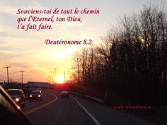 En regardant le chemin parcouru, voyons-nous la direction de Dieu, comment il nous a dirigé?