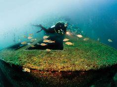 Diving the Florida Panhandle Shipwreck Trail | Scuba Diving