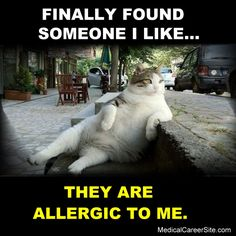 Finally found someone I #like. They're #allergic to me. http://medicalcareersite.com/crazynurse