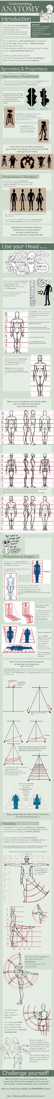UNDERSTANDING ANATOMY: part I >> by =FOERVRAENGD on deviantART >> there's a whole series on anatomy drawing... SO useful. I've been needing something like this for a good long time.