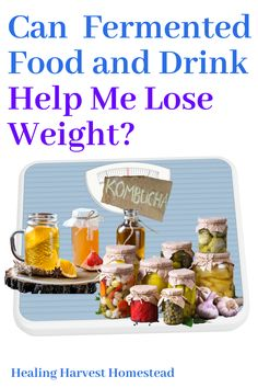 I have heard that eating and drinking fermented foods regularly can help you lose weight. Is this true? I decided to do some research and find out! Here's what I found out about losing weight with fermented foods and drinks. Either way---fermented foods are excellent for improving your gut health! #fermentedfood #loseweight #loseweightwithferments #fermenteddrink #homebrew Kombucha Fermentation, Kombucha Brewing, How To Brew Kombucha, Kombucha Recipe, Fermentation Recipes, Clean Recipes, Organic Recipes, Eating Raw, Healthy Eating
