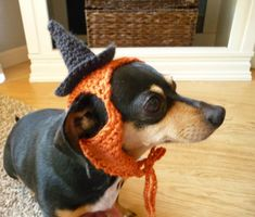 Dog Hat CROCHET PATTERN Witch Hat Pampered Pooch by zxcvvcxz