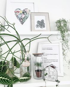 Creative and unique ways to set up plant shelves in your home, office, or home office! #plantshelfie #plantshelves #plantwallshelves #homedecor #homeoffice #plantstyling #decoratingwithplants