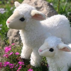 Adorable Plush Lambs find these and many more at Auswella Plush #plush #plushies #plushanimals #lamb #sheep Plush Animals, Lambs, Plushies, Pet Toys, Sheep, Felt Stuffed Animals, Stuffed Animals, Softies