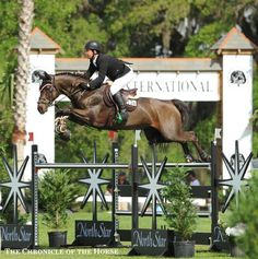 Photo by Mollie Bailey Good Luck and Cian O'Connor scored their first big win in the $50,000 Live Oak International CSI-W. | The Chronicle of the Horse