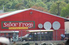 Senior Frogs St. Thomas