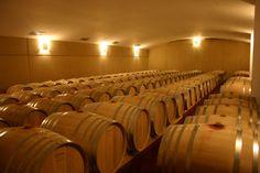 La bodega, de noche, es ejemplo de la quietud necesaria del trabajo bien hecho. Bajo tierra, y en silencio, para crear vinos elegantes y con longitud en boca.