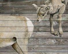 Jane Kim Migrating Murals Photos 1 - Conscientious Creature Paintings pictures, photos, images