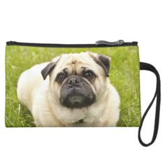 Pug cute dog beautiful photo, gift wristlet clutches