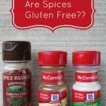 Gluten Free Spices 101