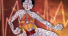 Le concept de méridien vient des techniques de la médecine chinoise traditionnelle comme l'acupuncture et…