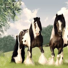 Pair of beautiful gypsy vanner horses counted cross stitch pattern