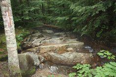 Franconia Notch State Park NH