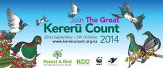 The Great Kereru Count! t's easy! Between the 22nd of September and the 5th of October 2014, look for kereru in a garden, park, reserve or school grounds – or any other likely outdoor place. We're going to count kereru in cities, towns and the countryside all over New Zealand.  Adults, kids, teenagers, ngā tangata katoa – we're asking everybody to help. Garden Park, October 2014, Teenagers, Conservation, New Zealand, Countryside, Cities, Wildlife, Science