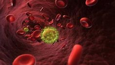 In a research paper published in Science, scientists have announced that a new AIDS vaccine was able to completely prevent HIV infection in half of the non-human primate test subjects. Hiv Aids Information, Alexis Arquette, Latest Scientific Discoveries, People With Hiv, Latest Science News, Hiv Positive, Drug Discovery, Immune System, Furniture