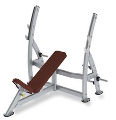 Paramount Incline Press Bench with Plate Holders