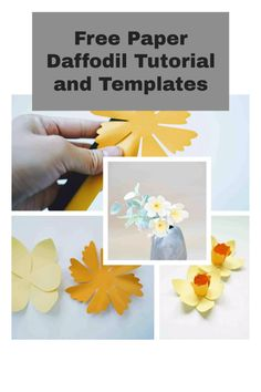 free paper flower svg and printable templates Daffodil Flower, Flower Svg, Flower Template, Flower Crafts, Free Paper, Diy Paper, How To Make Paper Flowers, Giant Paper Flowers, Paper Flower Tutorial