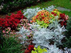 Chautauqua Institution - Beautiful Flowers - photo by bks4jhb, via Flickr