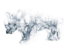 Nashorn Rhinoceros Smoke Effect made in Adobe Photoshop Adobe Photoshop, Photoshop Effects, Photoshopped Animals, Smoking Effects, Rhinoceros, Gouache, Cool Words, Brushes, Smoke