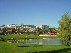 Jardim da Algodeia - Setúbal - Portugal