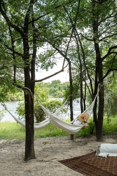 Here are our ten rules to throwing the perfect picnic on the Zambezi River. Think setting, atmosphere and sweet, sweet dining. Victoria Falls, Bird Watching, Rafting, Lodges, Canoe, Cruise, Picnic, Southern, Africa
