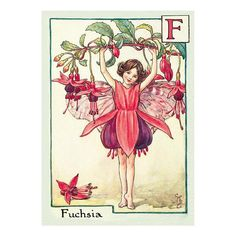 Green Flash Postcard FF-025