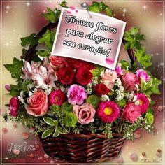 Flores e frases: TROUXE FLORES PARA ALEGRAR SEU CORAÇÃO