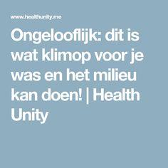 Ongelooflijk: dit is wat klimop voor je was en het milieu kan doen! | Health Unity