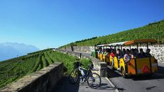 Lavaux Tourism, Switzerland - Next Trip Tourism