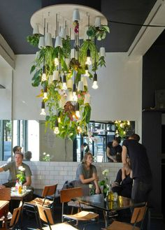 plantas colgantes How amazing is this hanging garden chandelier? Fantastic interior design for a cafe! Deco Design, Cafe Design, Cafe Restaurant, Restaurant Design, Cafe Bar, Hanging Plants, Indoor Plants, Cafe Interior, Interior Design
