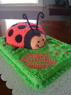 Ladybug cake... I need to make this for Jeff!  LOL