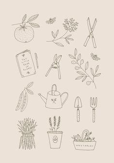 Ryn Frank is a freelance illustrator, specialising in hand drawn illustrations. Garden Illustration, Simple Illustration, Floral Illustrations, Botanical Illustration, Graphic Illustration, Illustration Inspiration, Handpoke Tattoo, Garden Drawing, Bullet Journal Inspiration