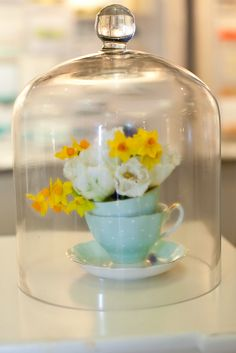 The options are endless with our glass bell jars!