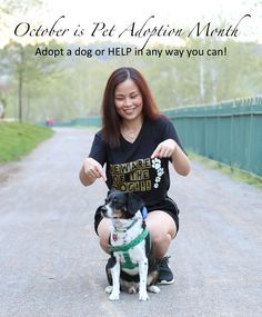 Adopt a Dog this October for Pet Adoption Month. #PedigreeGives #shop #cbias