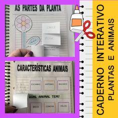 Código 557 Caderno interativo - Plantas e Animais