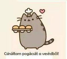 Zoé Rácz's pusheen magyar😉 images from the web Gato Pusheen, Pusheen Love, Logo Gato, Simons Cat, Kawaii Doodles, Unicorn Cat, Cute Cartoon Wallpapers, Wallpaper Iphone Cute, Cute Characters