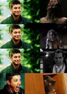 Jensen Ackles, Supernatural Fans, Supernatural Episodes, Supernatural Wallpaper, Destiel, Emmanuelle Vaugier, Fangirl, Winchester Boys, Winchester Brothers