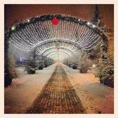 My beautiful home town, Pitești, România! Beautiful Homes, Home Appliances, Christmas, House Of Beauty, House Appliances, Xmas, Appliances, Navidad, Noel