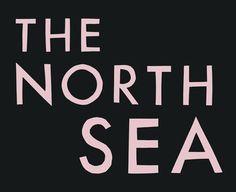 FRANZ FERDINAND COLABORA CON TODD TERJE Domino Records, sello británico, subió a la web el track The North Sea. El mismo nació de la participación de dos grandes: la banda de Alex Kapranos y el disco master noruego.