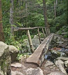 There are so many wonderful places to explore in the Smoky Mountains!