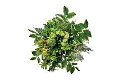 22 Gorgeous (and Green) Floral Arrangements for a Winter Wedding: Curcuma, green dianthus, hellebore, bunny tail, green trick, fern from Designs by Ahn
