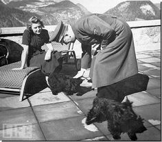 Hitler enjoying some downtime with Eva Braun and her dogs - Negus and Stasi (no joke...one of her dogs was called Stasi).