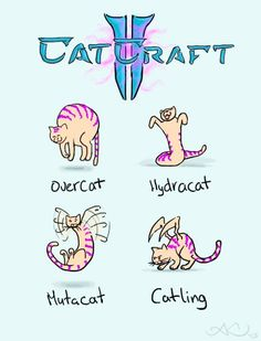 CatCraft [Pic] | Gee