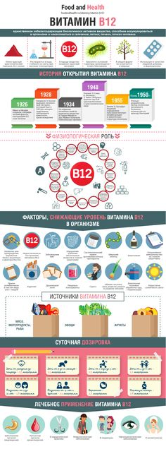 Инфографика витамина B12 | Food and Health