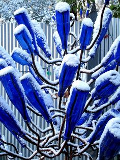 bottle trees with snow by blue bottles, via Flickr