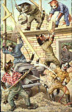 Construction Cats - Publisher: Alfred Mainzer
