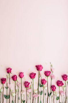 desktop inspiratoin beautiful flower wallpaper.html