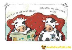 ¿Leíste lo de las vacas locas?