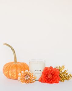 We patiently wait for pumpkins to be in season every year. Stock up on this candle so that you don't have to wait. Each purchase empowers female refugees at Prosperity Candle in Massachusetts. * Appro